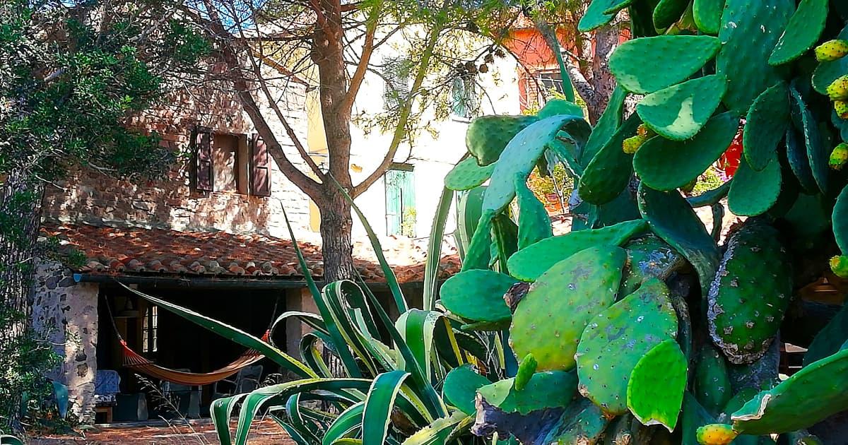 """Vi presentiamo """"LA VILLA"""": dal 21 settembre in Capraia per un soggiorno alla scoperta dell'isola"""
